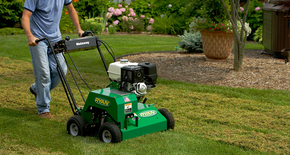 Spring Clean Up Services Calgary Lawn Yard Spring Clean